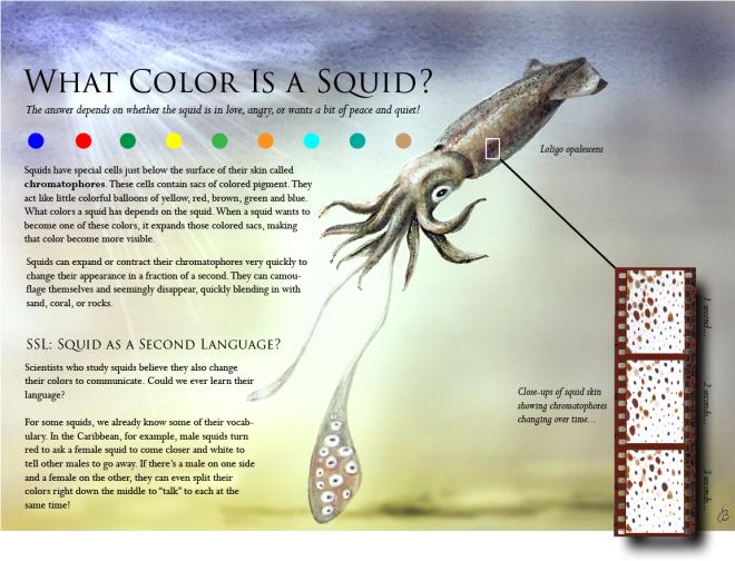 squid-poster7-sepia